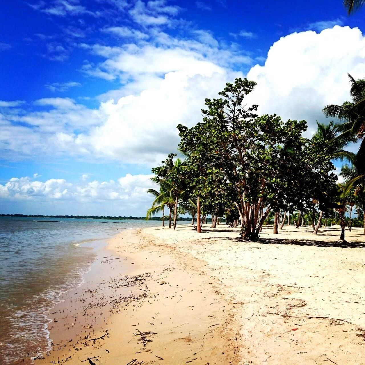 Plaża na Dominikanie
